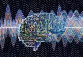 brain codes