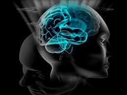brain future